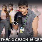 Постер с боксером